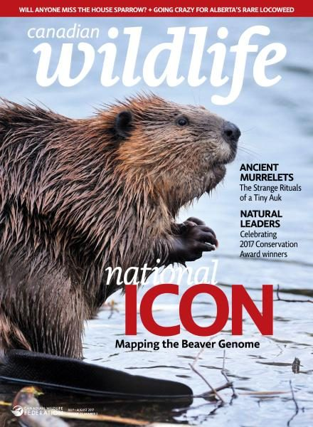 Canadian Wildlife — July-August 2017