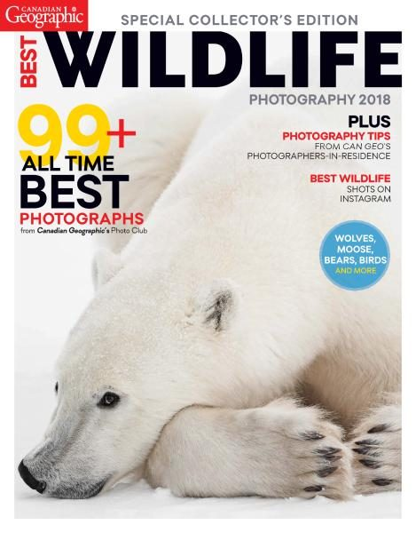 Canadian Geographic — Best Wildlife Photography 2018
