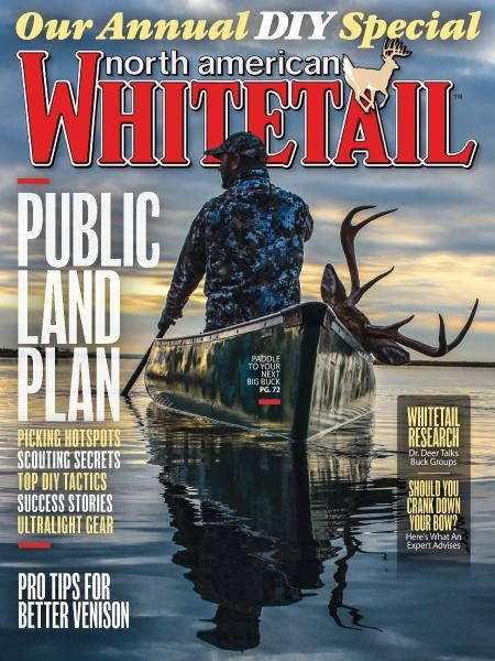 North American Whitetail — Diy Special 2017
