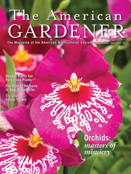 The American Gardener — November-December 2017