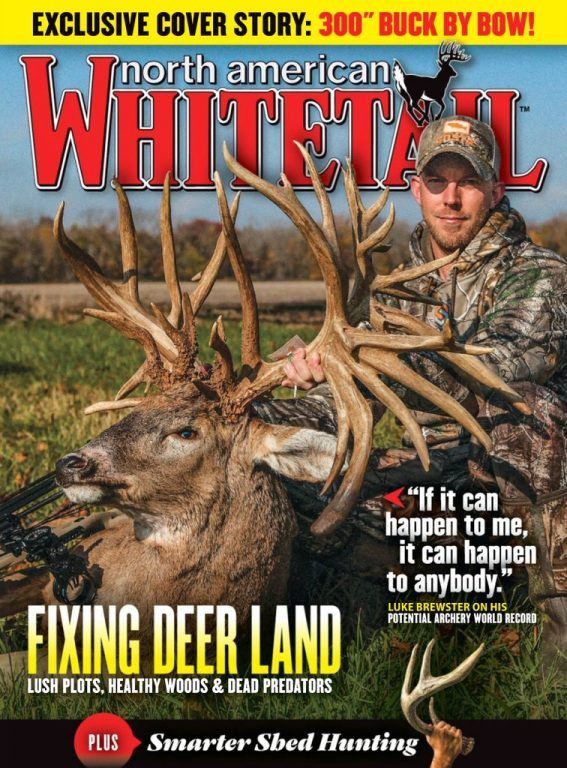 North American Whitetail – February 01, 2019