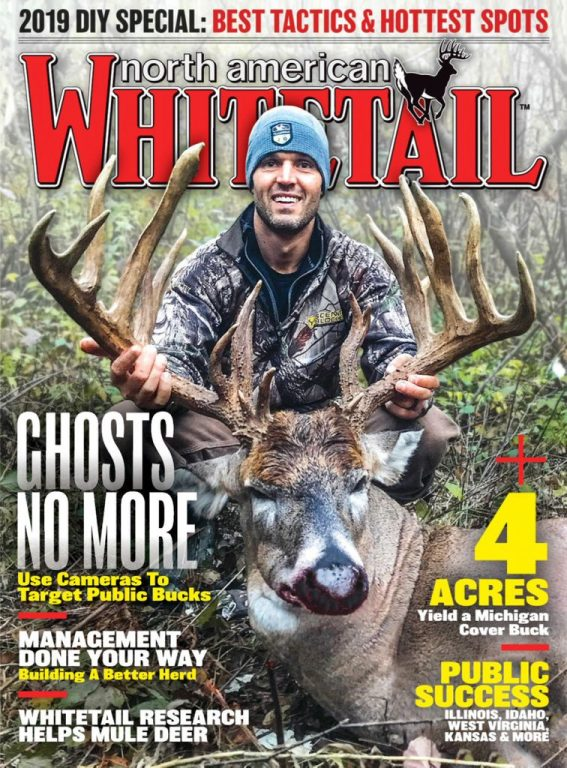 North American Whitetail – August 2019