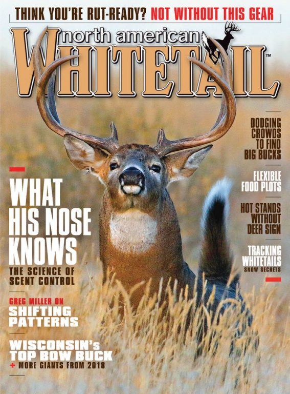 North American Whitetail – September 2019